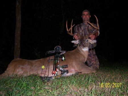 Davis Island whitetail Deer