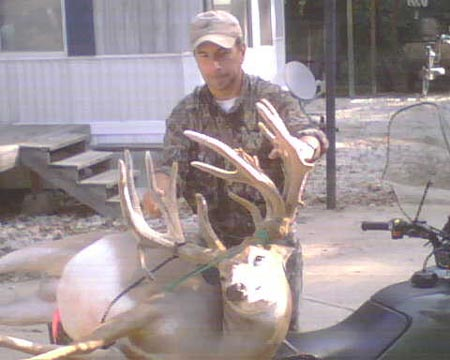 Huge Somerset Buck